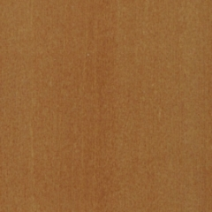Golden-oak-mat-5509