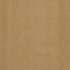 Maple-5409